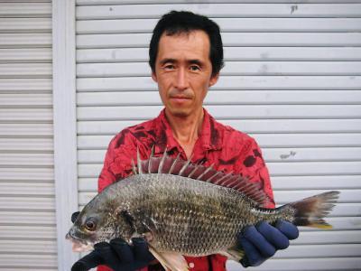 20110720fujisawa.jpg