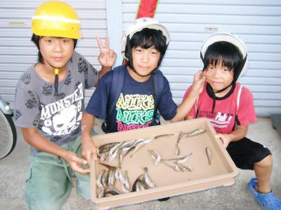 20110823sugita.jpg