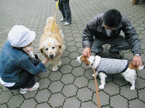 10長岡公園352