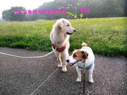 10長岡公園695
