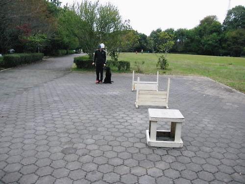 10長岡公園898