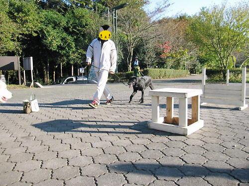 10長岡公園912