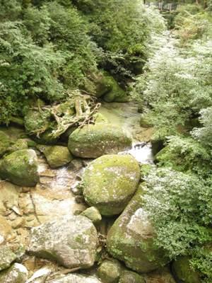 清流の中に巨大な丸い石