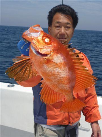 ③ぎょぎょ魚魚