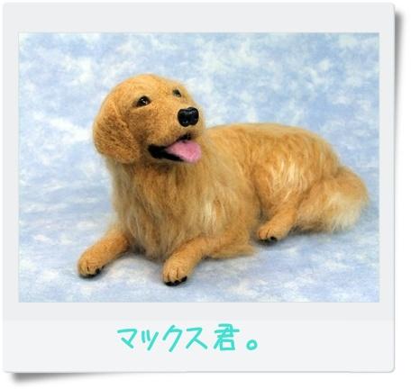 2011_09230010.jpg