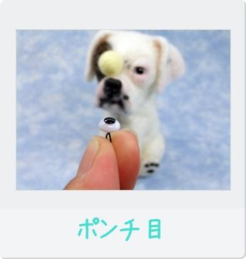 2011_10020012.jpg