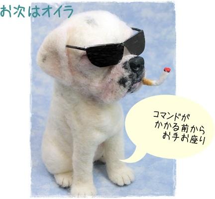 2011_10020046.jpg