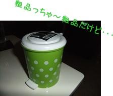 2011_10120023.jpg