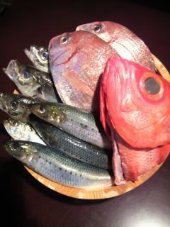 鮮魚盛り 2