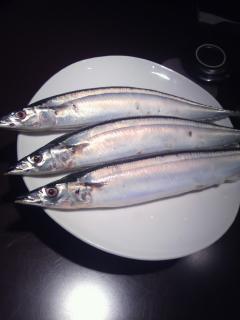 秋刀魚 2