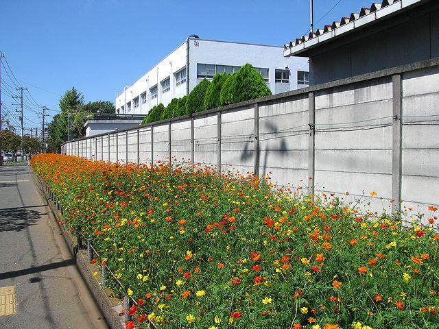 季節ごとに色々な花が咲き乱れる…