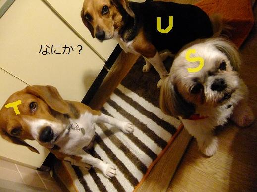 014_20111022001153.jpg