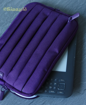 kindle case01a