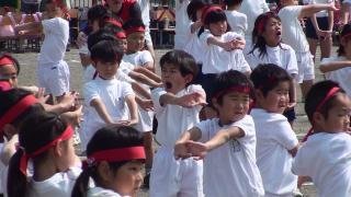 20110604 kai体操