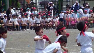 20110604 kaiたまいれ