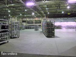 29日(金)PM9時過ぎの市場納品ゲート