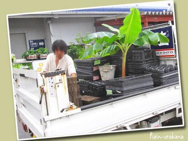 軽トラ満タンこ f(^ ^;