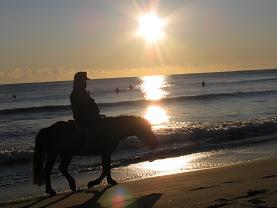 日の出乗馬