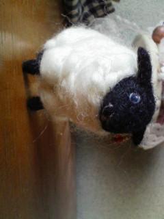 黒羊・もこもこ・アップ