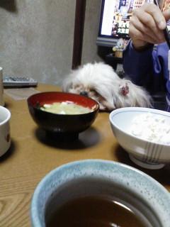 食べたい、眠たい