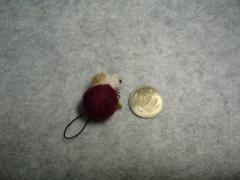 りんごとモルモット・大きさ比較