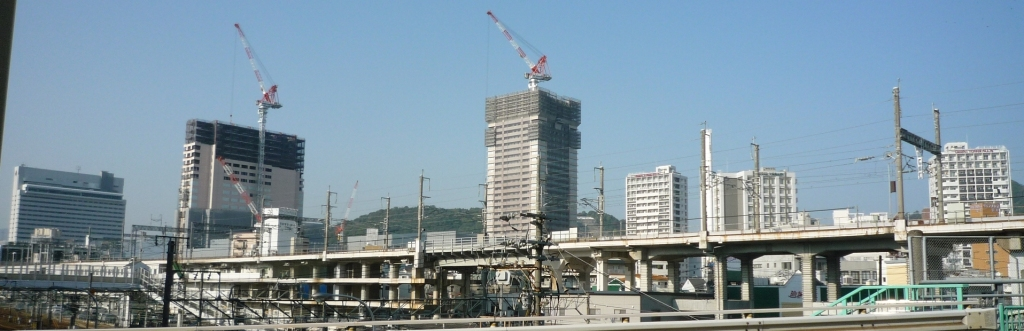 20091031wakakusa-1