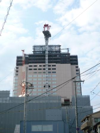 200911wakakusa-5