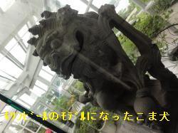 9_20110513214557.jpg