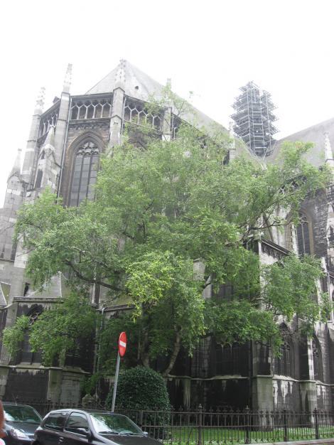 聖ジャック教会?
