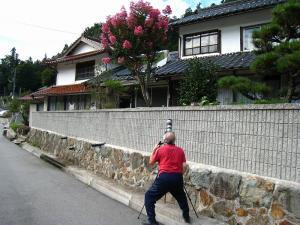 2009.夏、「百日紅」・「サルスベリ」、階見、「撮彩」2