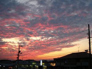 2009.8.23.「神辺の夕焼け」、3