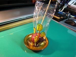 「姫りんご飴」、¥300、2009.・油木吉備津神社秋祭り、1