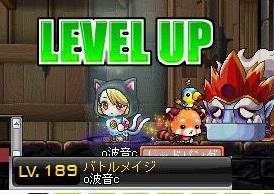 Maple110503_041240.jpg