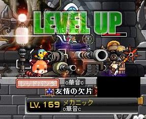 Maple110608_053848.jpg