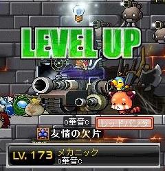Maple110610_063849.jpg