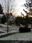 20101123 Morning snow