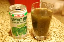20101129 Pennywort Drink