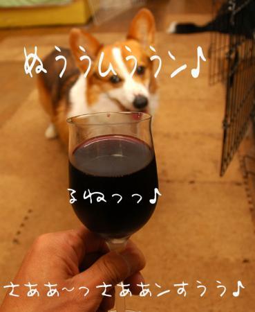 1006224blog.jpg