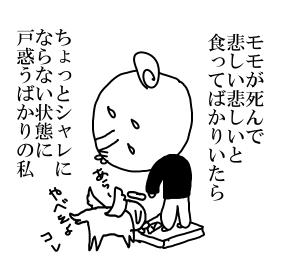 05311.jpg