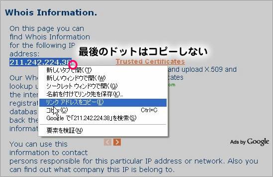pandoraTP004_20091011102009.jpg