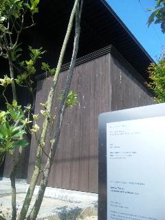 naoshima12.jpg