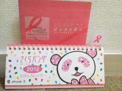 pink-ribbon2011.jpg