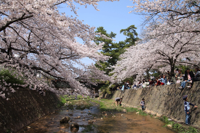 春の小川で