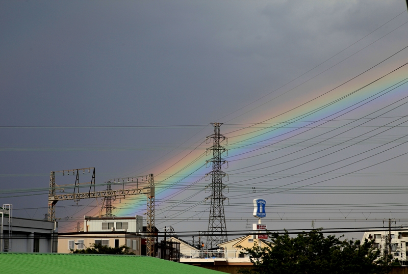 いつもの景色に虹が架かったんだ