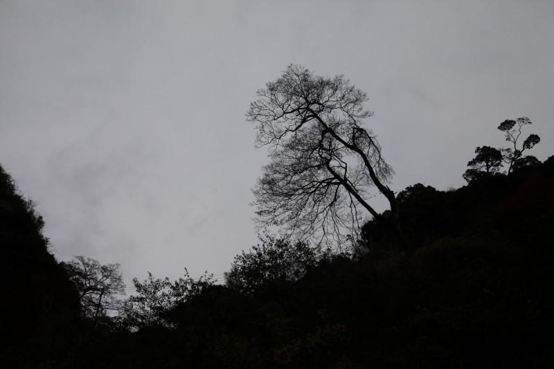 風の中にどこか冬の匂いがして・・・