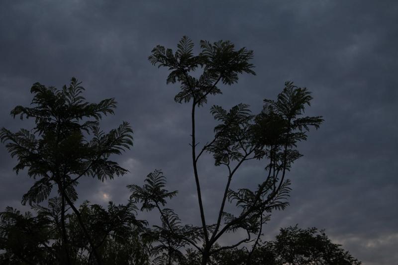 灰色の空が魅せてくれる景色