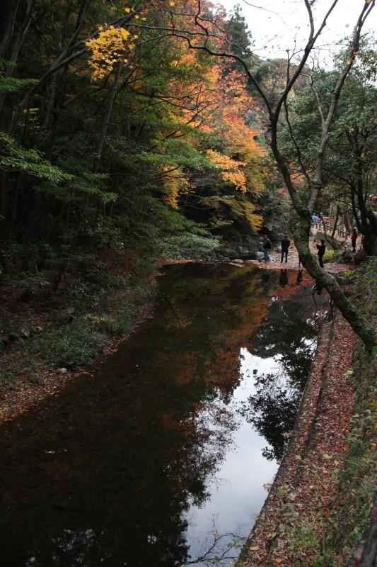 晩秋の天の川で