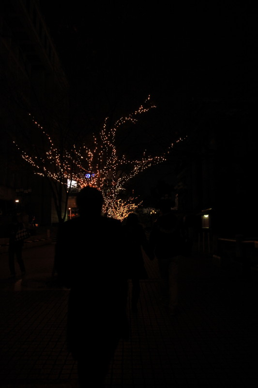 イヴの記憶 ~黒影サンタさん街をゆく~