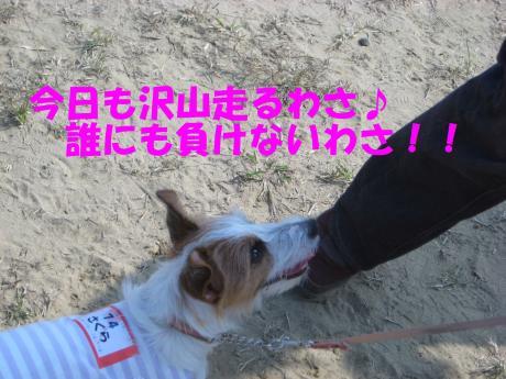 縺・§繧・▲縺擾シ托シ廟convert_20091018215234[1]