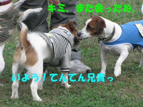 繝ゥ繝ウ17_convert_20091025003740[1]